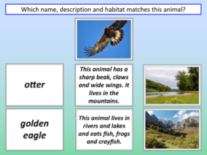 Matching animals to their habitat - cover image 3